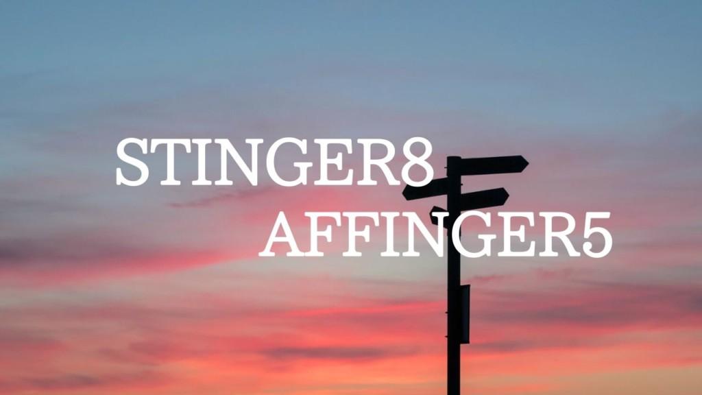 STINGER8 AFFINGER5